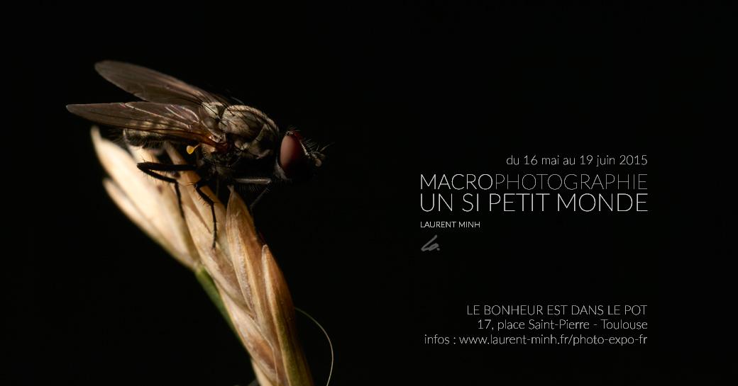 Un si petit monde - Toulouse Exposition-20x10